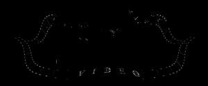 logo_VLV